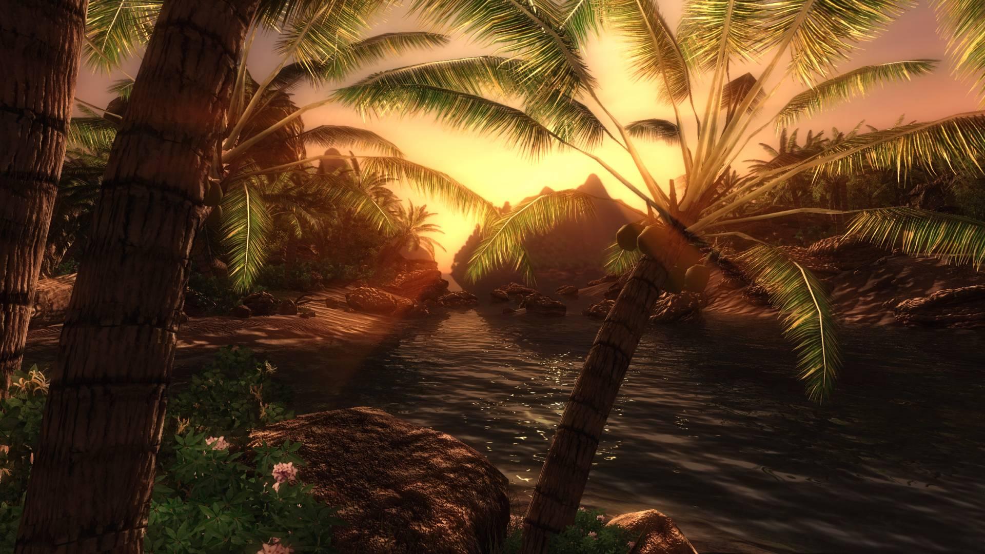 Ретекстур пальмы в Нериме